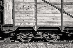 Tarnished, 2 (Lord Markus) Tags: rust rusty ruggine arrugginito carro carrozza vagone ferroviario wood legno marcio rotten ferrovia railway carriage rail abandoned urbex decay abbandonato degrado abbandono stazione train station casella blackandwhite bw textures trama texture nikon d300s