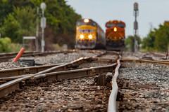 (o texano) Tags: houston texas railroads trains freights engines unionpacific bnsf
