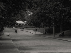 Lonely Road (gromin) Tags: bw black white monochrome grey gray park city moscow kolomenskoe bycicle blackandwhite outdoor road treeroad trees street