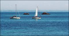 Le bonheur est la seule chose qui se double si on le partage. Albert Schweitzer (Phoebus58) Tags: boat mer sea ocean glenan voilier sailingboat atlantic bretagne brittany breizh bzh double olympus