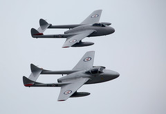 Vampires (Bernie Condon) Tags: vampire vampires dehavilland fighter bomber trainer military warplane jet vintage preserved dunsfold wingswheels airshow surrey uk aviation 2016