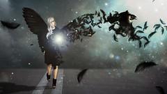 Raven (Upgrade Pictures) Tags: flickr estrellas