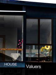 House Valuers (Steve Taylor (Photography)) Tags: architecture sign animal office window door black blue pink purple yellow white glass newzealand nz southisland canterbury christchurch cbd city flower tulip sunfllower table cloth giraffe floder vase