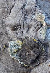 LAS ROCAS DEL CAP DE CREUS - caprichos de la naturaleza (beagle34) Tags: 98 catalunya costabrava capdecreus altempordà