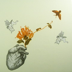 """One Heart A Day"" -Series http://www.etsy.com/shop/CAUSNFX (michiejefferson) Tags: flowers tree bird nature butterfly insect heart butterflies valentine angels anatomy oddities oddity cherubs anatomicalheart medicalart"