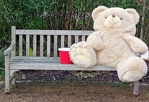 Big bear on a bench