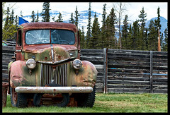 NEGLECTED / DLAISSE (XKINE) Tags: auto canada abandoned car fence nikon automobile neglected yukon clture abandonn d60 iamcanadian whitepassyukonroute yukonterritory nikond60 territoireduyukon karinecou xkine