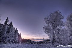 Winter Neverland (CJsarp) Tags: winter norway norge vinter hilton norwegen akershus noreg ullensaker klfta hiltonskogen thehiltonforest