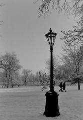 dutch winter (99) (bertknot) Tags: winter dutchwinter dewinter winterinholland winterinthenetherlands hollandsewinter winterinnederlanddutchwinter