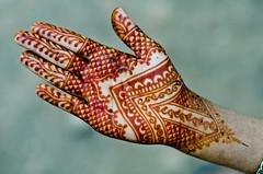Stain is Darkening (B.Bubble) Tags: india design hand fingers henna bodyart mehndi adornment