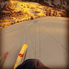 DPS' @ermepowskier out for  a #sunset shred yesterday across the street from #altaskiarea. (DPS SKIS) Tags: winter love square utah ut skiing squareformat alta hefe iphoneography dpsskis instagramapp uploaded:by=instagram