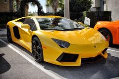 Lamborghini Aventador (Jason Sha'ul) Tags: car yellow orlando nikon florida automotive dslr lamborghini supercar v12 lambo lakemary carsforthecure aventador colonialtownpark lp7004