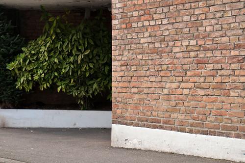 "Mercredi 13 Février 2013 | La Madeleine • <a style=""font-size:0.8em;"" href=""http://www.flickr.com/photos/88108321@N06/8470415131/"" target=""_blank"">View on Flickr</a>"