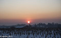 _DSC2270 (casirfm) Tags: sunset snow tramonto brianza v1 febbraio nikon1 besanainbrianza casirfm
