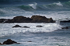 A Solidary Figure (kaeagles) Tags: california beach landscapes pacificocean pigeonpoint