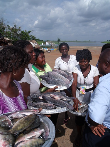Fish sellers in Ghana. Photo by Curtis Lind, 2009.