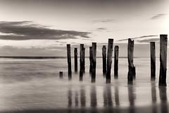St Clair Beach - Old Pier (Shannon Doyle - Digital Ninja Design) Tags: longexposure newzealand landscape 50mm lowlight stclair scenic nd wellington southisland dunedin traffictrails goatisland landscapephotography 10stop shannondoyle canon5dmarkii digitalninjadesign