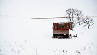 Heifer barn in winter