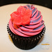 """Two tones cupcakes 1 • <a style=""""font-size:0.8em;"""" href=""""https://www.flickr.com/photos/68052606@N00/8520071859/"""" target=""""_blank"""">View on Flickr</a>"""