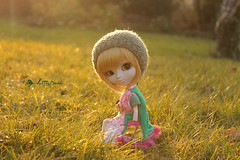 Sunset ~ (Little.Darki) Tags: sunset green animal de soleil eyes coucher goldenrod s wig pullip nella leeke obitsu 25cm rewigged rechipped ermeline