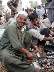 Fish Dealers, Peshawar, Pakistan (tyamashink) Tags: pakistan