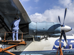 OPF_2013_03-22.jpg (LASCAR35) Tags: aviation scrapyard mechanic opf antonov opalocka an12b srxtranscontinental uk120005
