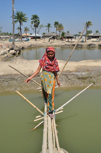 A woman crossing a bridge in Shyamnagar Upazila, Bangladesh. Photo by Sami A.Khan, 2012.