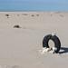 Tire in the desert