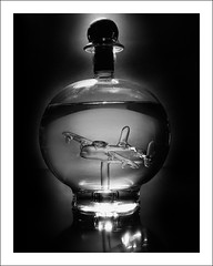 Lancaster in a Bottle (posterboy2007) Tags: bw glass bottle model sony lancaster grappa sonyrx100