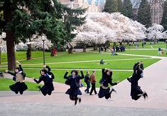 Japanese Schoolgirls at the Cherry Blossom Viewing (JohnCramerPhotography) Tags: jump jumping cherryblossom sakura hanami