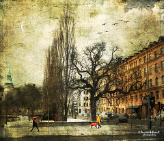 Walking the dog (Kerstin Frank art) Tags: street trees sky dog texture photoshop buildings walking distressedjewell kerstinfrankart creativephotocafe