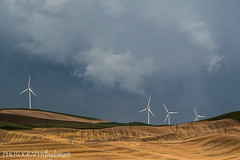 WIND TURBINES (PHOTOGRAPHY|bydamanti) Tags: thepalouse washington windturbines stormclouds
