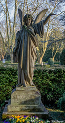 Grab (Jens Bolz) Tags: friedhof grabmal grab graveyard toombstone letzte ruhe rip