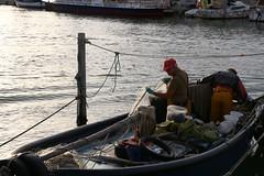 Mtier de la mer (Nadia L*) Tags: pcheurs grauduroi mer sea bateau boat gard