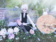 Neko garden (Yukiterudiary) Tags: cubic cherry kreations 1m20 db reis stuff altair tamagosenbei mika nocciola kemono gachas group gifts sl neko secondlife kawaii cute
