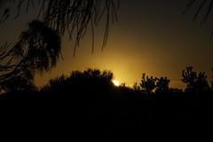 Cape Otway sunset (SteffBoe) Tags: greatoceanroad gor visitvictoria australia visitaustralia capeotway 12apostles muttonbirdisland razorback lochardgorge bassstrait seascape sea coast
