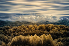 Blue Ridge Mountain Morning (shutterclick3x) Tags: infrared ir mountains blue ridge frankloose wow