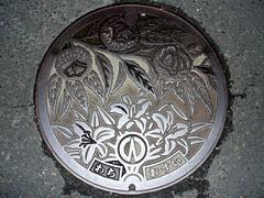 Wachi Kyoto, manhole cover (京都府和知町のマンホール) (MRSY) Tags: wachi kyoto japan manhole flower 栗 マンホール 花 日本 和知町 京都府 ユリ