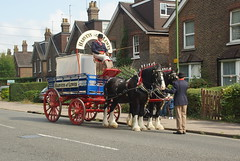 DSC03375 (Alexander Morley) Tags: haywards heath railway station 175 175th anniversary shire horse