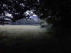 Almost dark-walking with Sara  Tonight (ART NAHPRO) Tags: twilight sussex rural rustic farm farmland nightfall