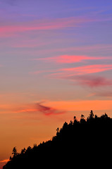 Sentinels (James_D_Images) Tags: sunset dusk trees silhouette conifers evergreens west coast iconic pacificnorthwest south whidbeyisland blue pink yellow clouds