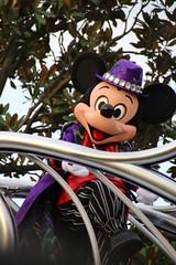 Halloween Pop'n LIVE (sidonald) Tags: halloweenpopnlive disneyshalloween2016 tokyo disney tokyodisneyland tdl tokyodisneyresort tdr parade halloween mickeymouse mickey