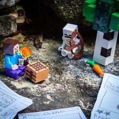 truce (hexapetala) Tags: minecraft lego card ewok skeleton cubessquared