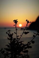 sun (erilessai) Tags: focus sun sunset shadow new awesome photograph photography photo greece sky blue red sea ocean endless beautiful flickr nikon love romantic moment