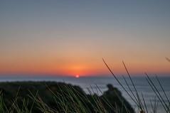 Hierbas (ccc.39) Tags: asturias cantbrico atardecer sunset ocaso puestadesol hierbas yerba