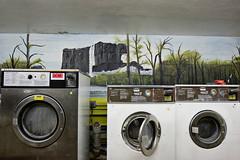 NYC137033 (ARTE CRUEL) Tags: clothesdryer empty imagetoosmall laundry linge mural orlando orlandoflorida processed selfservicelaundry surfacelevel tobekeyworded unitedstates vide washingmachine