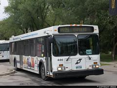 Winnipeg Transit #444 (vb5215's Transportation Gallery) Tags: winnipeg transit 1999 new flyer d40lf