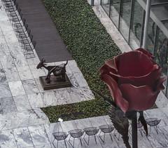 A Rose for Esmeralda (monojussi) Tags: newyork newyorkcity picasso sculpture goat esmeralda moma museumofmodernart isagenzken rose