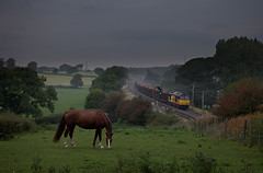 Horsepower (RF100) Tags: 2016 60 60085 boulogne britain brush brushtraction cables catenary class60 colas colasrailfreight diesel electricpower electricrailway england equine freight haulage hauling heavy horse lancashire lancaster loco locomotive locomotives log logs lumber mirrlees mirrlees8mb275t ohl ohls oubeck overheadline power railfreight railroad railway railways timber train trains transport uk unitedkingdom wcml westcoastmainline wood