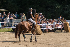 DSC01933_s (AndiP66) Tags: blau aespli derby hindelbank springen 2016 pferd horse schweiz switzerland kantonbern cantonberne concours wettbewerb horsejumping springreiten pferdespringen equestrian sports pferdesport sport martinameyer grueb wolhusen luzern sony sonyalpha 77markii 77ii 77m2 a77ii alpha ilca77m2 slta77ii sony70400mm f456 sony70400mmf456gssmii sal70400g2 andreaspeters bern ch september